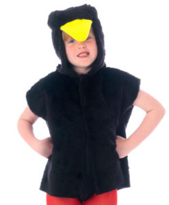 Childs- Blackbird Tabard