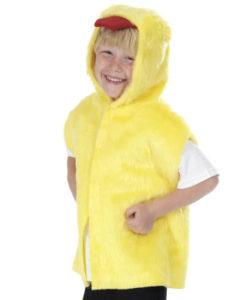 Childs- Chicken Tabard