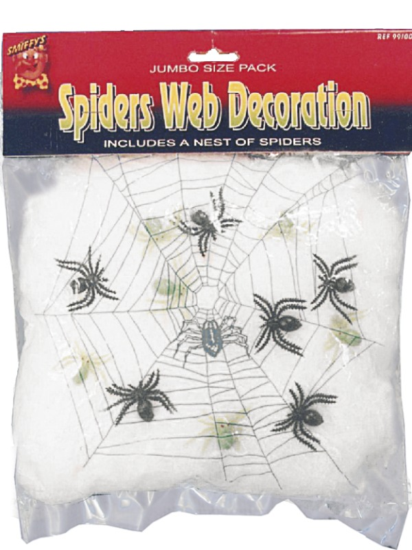 Spider s Web Decoration